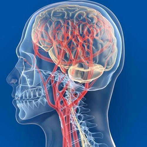 восстановление кровообращения мозга
